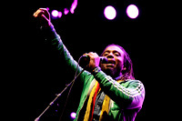 The Wailers - Folkfest 2013