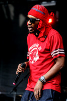 Deltron 3030 at the RBC Royal Bank Bluesfest 2014