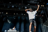 Tyler, the Creator at the RBC Royal Bank Bluesfest 2014